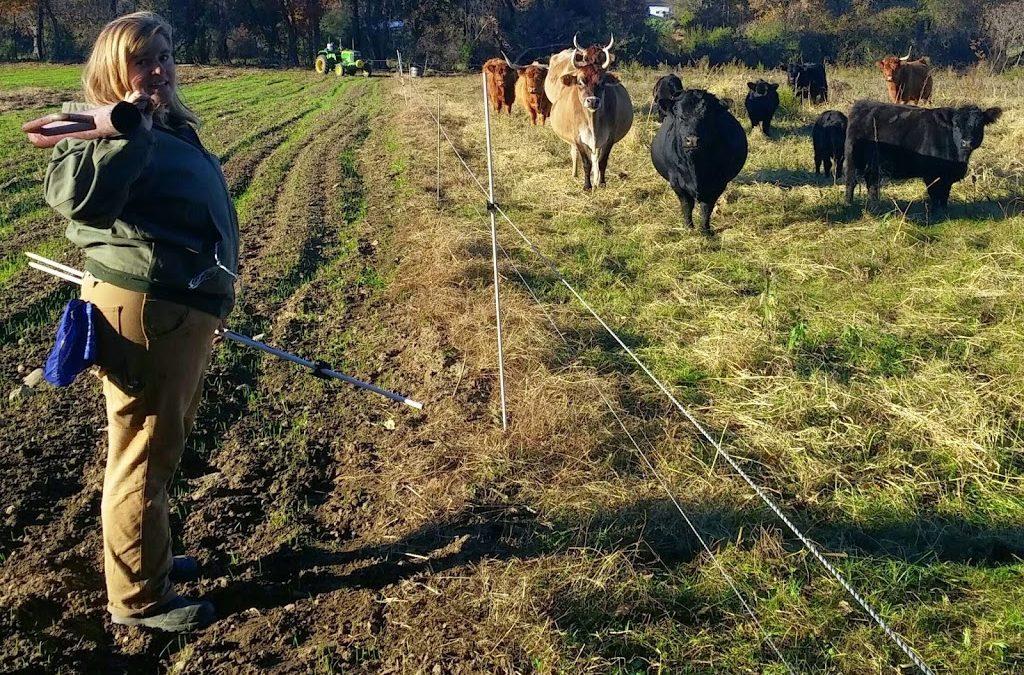 Meet the Farm Crew Part III: Erika Allen